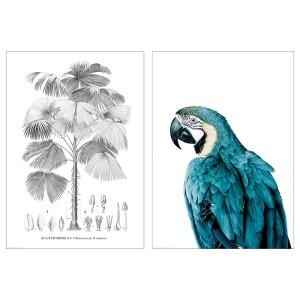 БИЛЬД Постер, Птица и дерево, 2шт